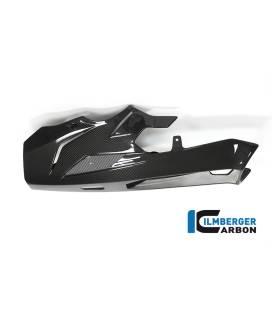 SABOT MOTEUR CARBONE BMW S1000XR / WUNDERLICH