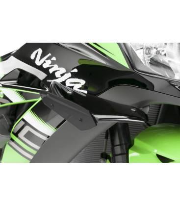 Kawasaki z1000 ABS 2011 2012 2013 11 12 13 14 15 16 17 repose pied appendice Noir