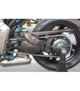 PROTECTION MONOBRAS CARBONE CB1000R LIGHTECH 013.Personnalisation – CARH7060 –  €